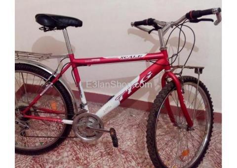 سيدى بشر /دراجة TPG استعمال خفيف بحالة جيدة جداجدا